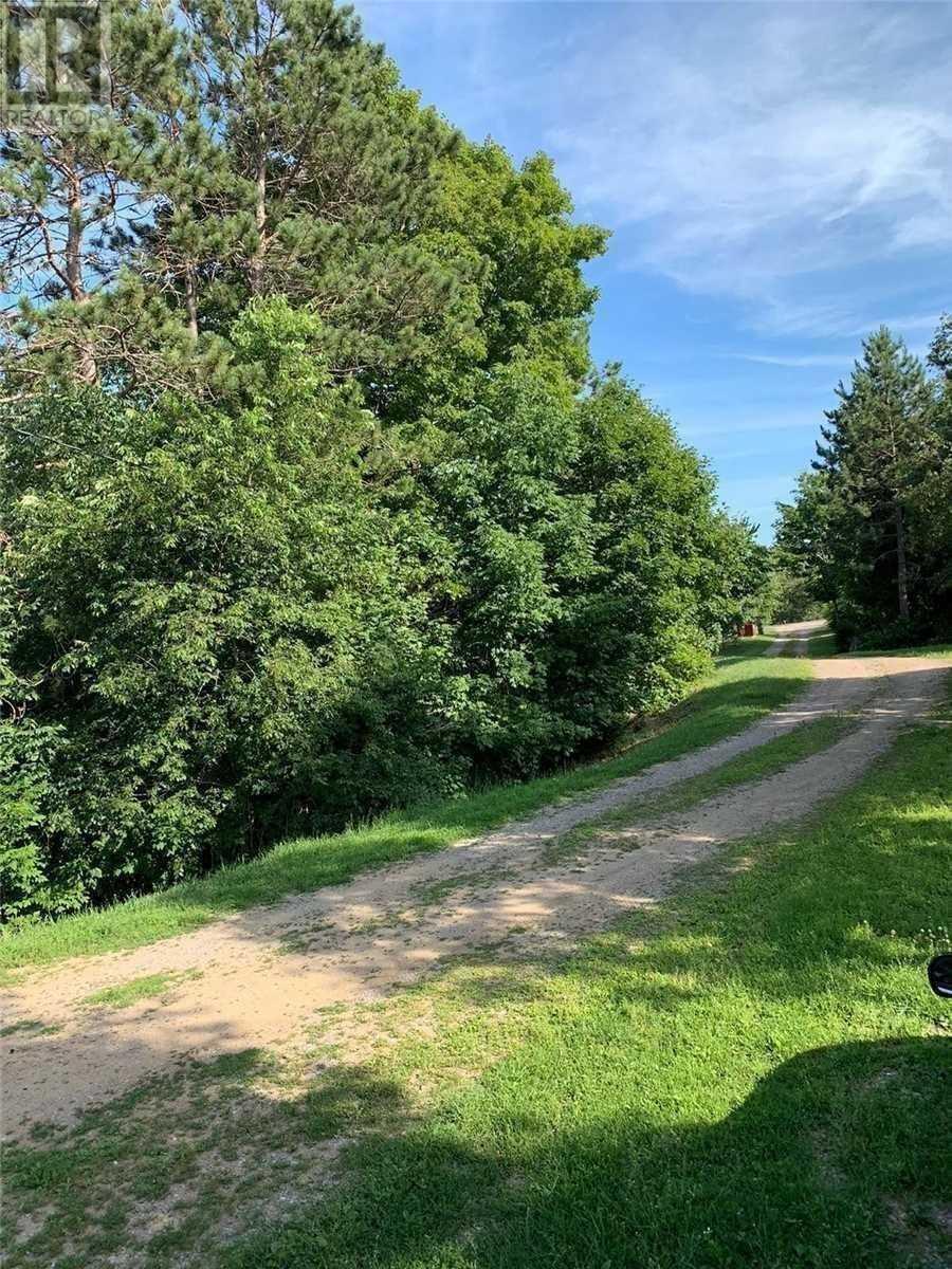 1624 County 620 Rd N, North Kawartha, Ontario  K0L 1A0 - Photo 19 - X5271188